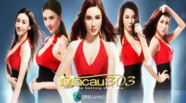 Agen Judi Live Casino Online Opus Gaming Terpercaya